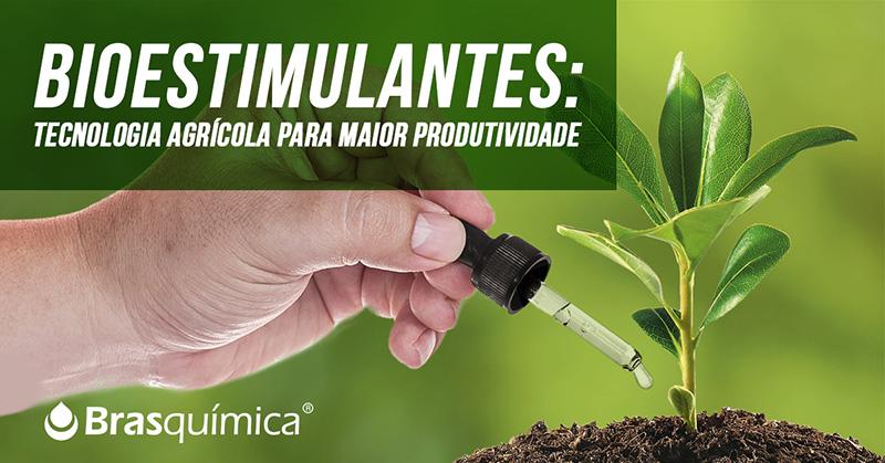Bioestimulantes: tecnologia agrícola para maior produtividade