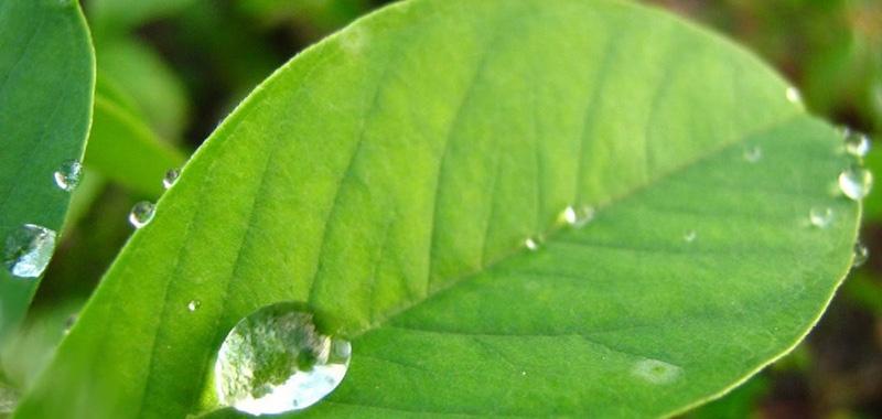 Para que serve um redutor de pH agrícola?